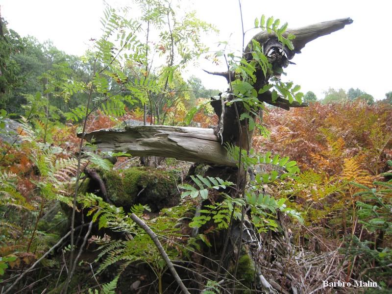 Naturlig trädskulptur (lom)