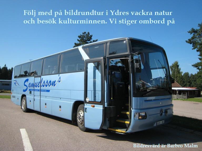 Samuelssons buss